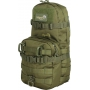 Batoh Viper Tactical One Day Modular / 13.5L / 19x20x43cm Green